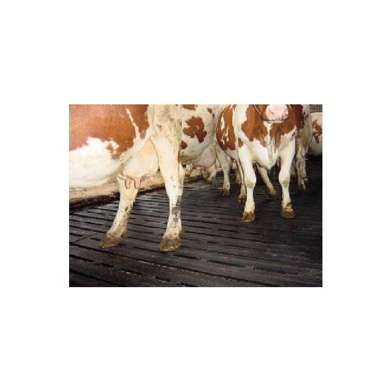 Mata na ruszta legowiskowa hodowlana 185x115 cm